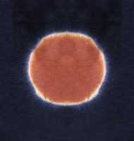 terra-hole